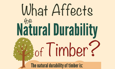 What Affects The Natural Durability Of Timber?