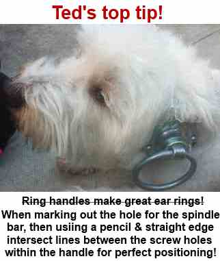 Westie with a ring latch