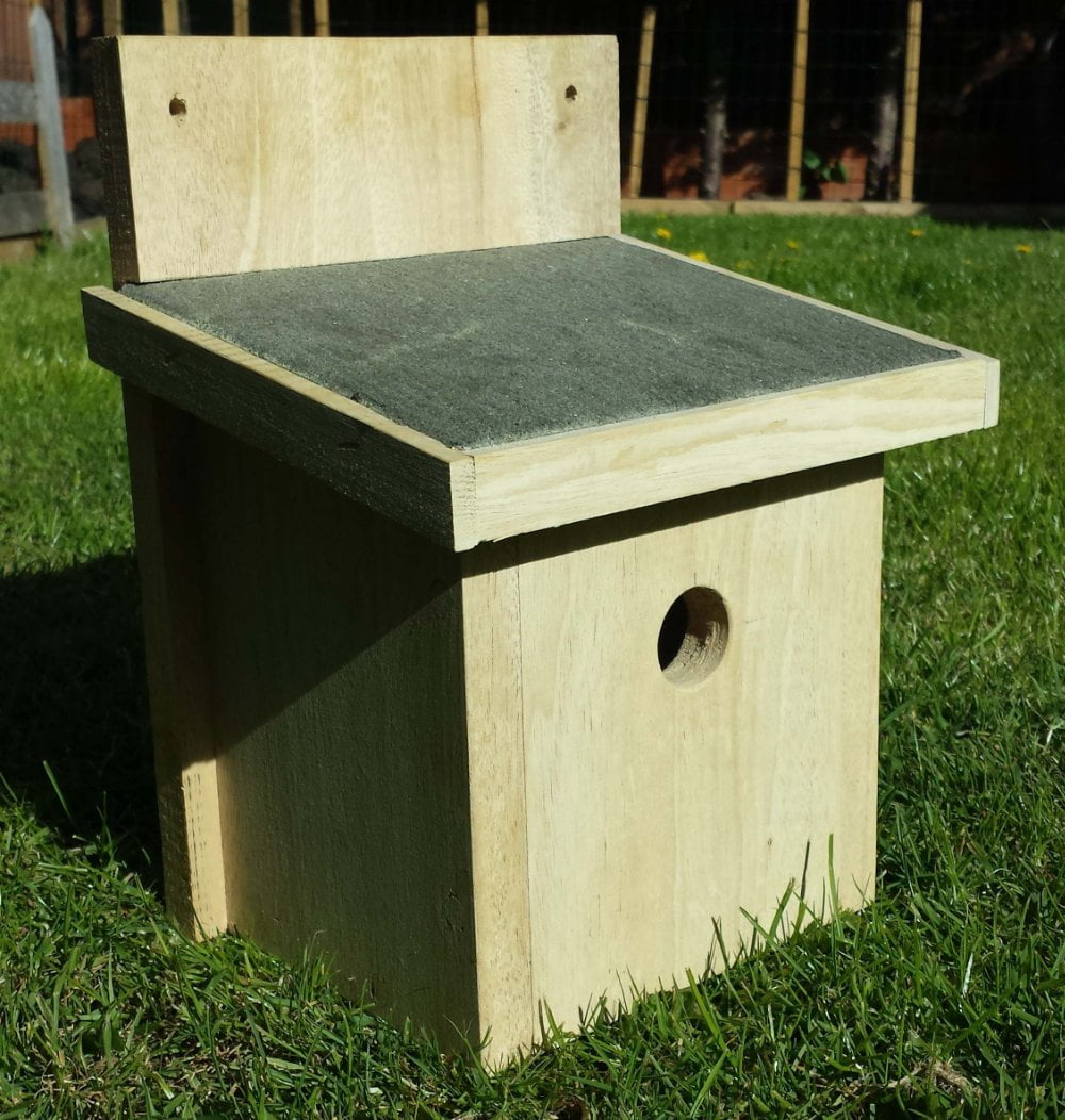 How to make a bird box that brings birds to your home